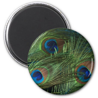 Green Peacock Feathers 6 Cm Round Magnet