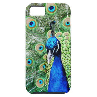 Green Peacock iPhone 5 Cases