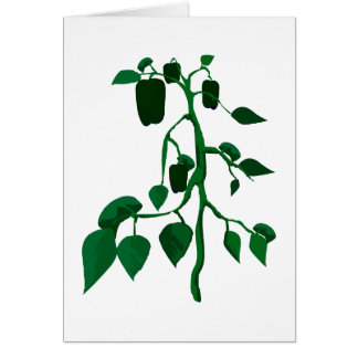 Green peppers on green plant graphic card