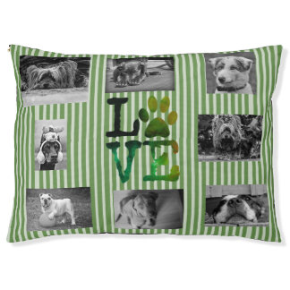 Green Personalized Photo Paw Love Dog Bed
