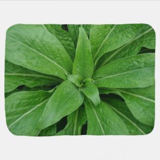 Green Plant Baby Blanket