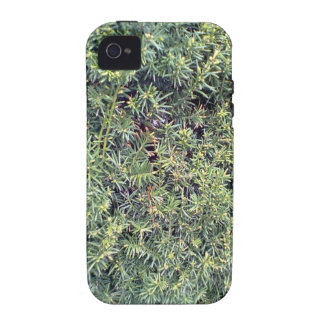 Green plant Case-Mate iPhone 4 covers
