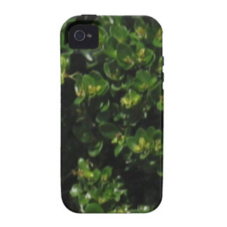 Green Plant iPhone 4 Case