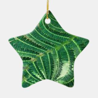 Green Plant Ceramic Star Decoration