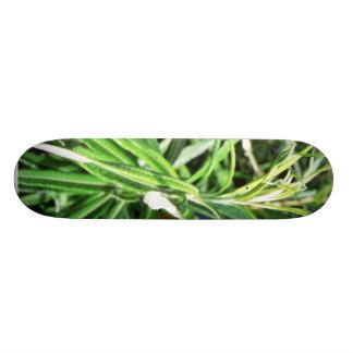 Green Plant Custom Skate Board