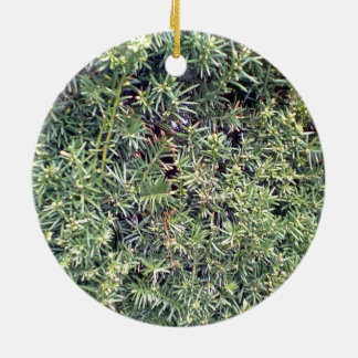 Green plant christmas tree ornaments