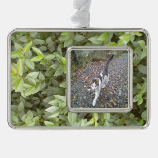 Green plant leaf silver plated framed ornament