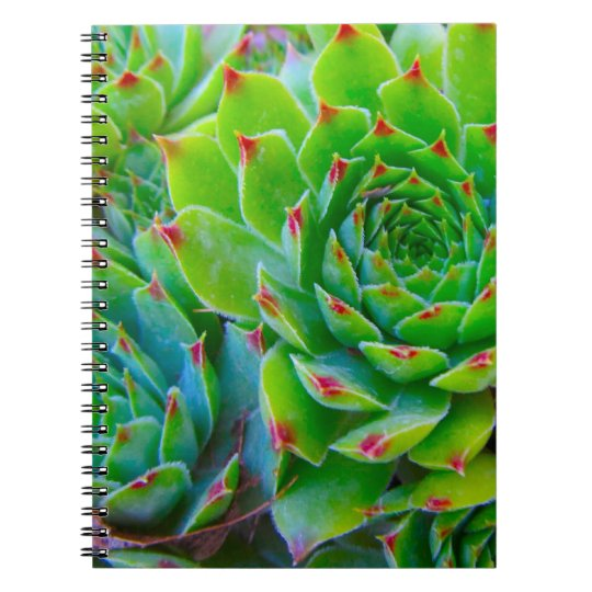 Green Plant Notebook