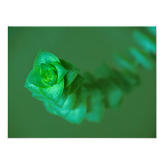 Green Plant Portrait Poster