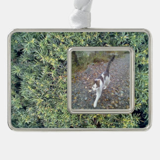 Green plant silver plated framed ornament