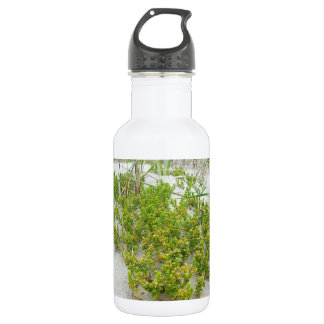 Green plants at the beach 532 ml water bottle