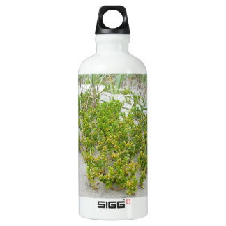 Green plants at the beach water bottle