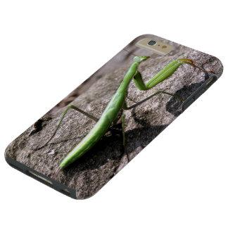 Green Preying Mantis on a Rock Tough iPhone 6 Plus Case