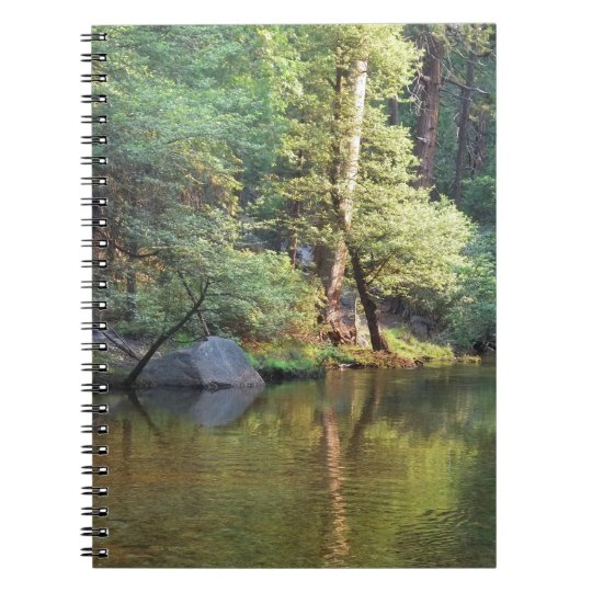 Green Reflections Spiral Notebook