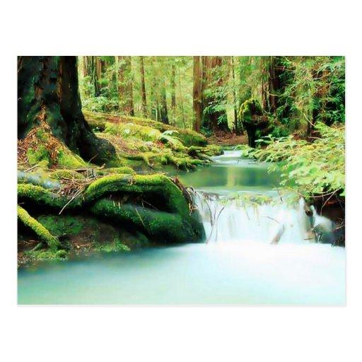 Green River Falls Post Cards