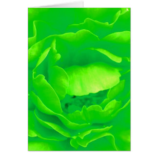 Green Rose Cards