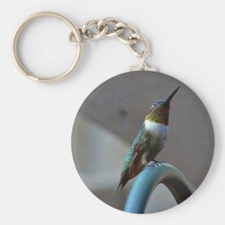 Green Ruby little Hummingbird Keychain
