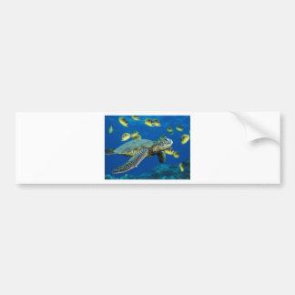 Green Sea Turtle Car Bumper Sticker