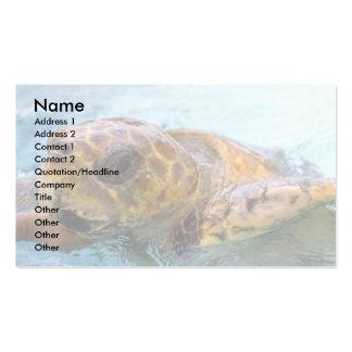 Green sea turtle business card templates
