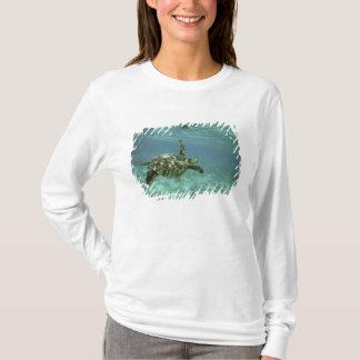 Green Sea Turtle, (Chelonia mydas), Kona Coast, T-Shirt