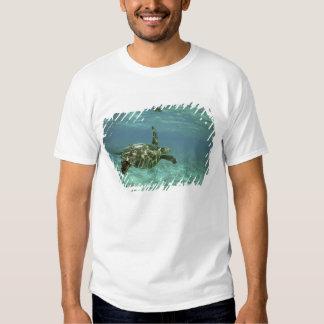 Green Sea Turtle, (Chelonia mydas), Kona Coast, Tee Shirts