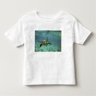 Green Sea Turtle, (Chelonia mydas), Kona Coast, Toddler T-Shirt
