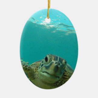 Green Sea Turtle Christmas Ornament