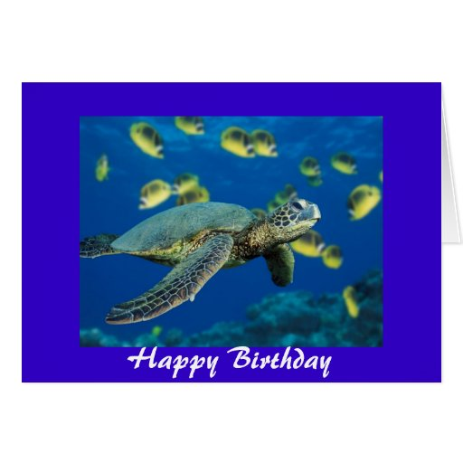 Turtle First Birthday Invitations with awesome invitation layout