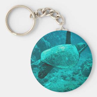Green Sea Turtle Key Ring
