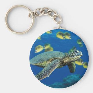 Green Sea Turtle Keychain