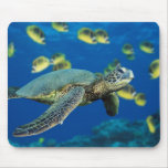Green Sea Turtle Mouse Pad