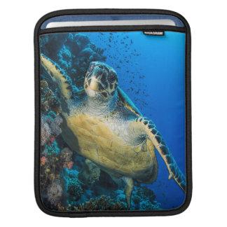 Green Sea Turtle | Red Sea iPad Sleeve