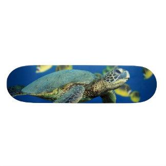 Green Sea Turtle Skateboard Deck