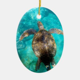 Green sea turtle swimming underwater paradise christmas ornament