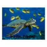 Green Sea Turtle, turtle..turtle! Poster