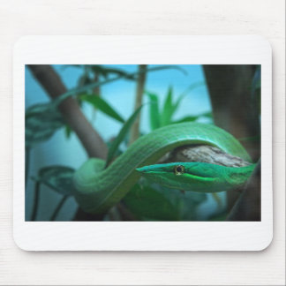 Green Snake Eye Mouse Pad