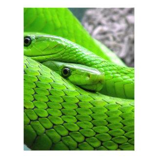 """Green Snake 8.5"""" X 11"""" Flyer"""