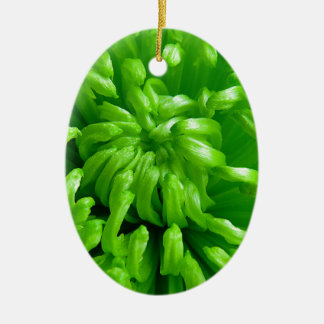 Green Spider Mums Ceramic Oval Decoration