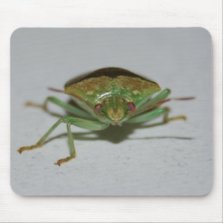 Green Stink Bug mousepad