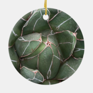 Green Succulent Circle Ornament