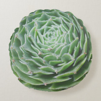 Green Succulent Photo Round Cushion