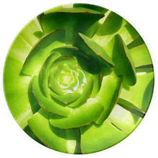 Green Suculent Aeonium By Amy Vangsgard Porcelain Plates
