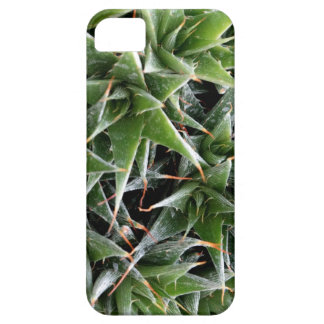 Green Suculents iPhone SE + iPhone 5/5S Barely There iPhone 5 Case