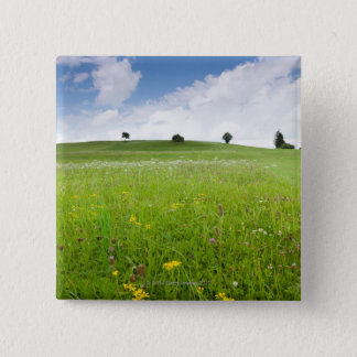 green summer meadows in bavaria, ostallgäu with 15 Cm Square Badge