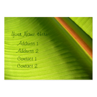 Green Swirl Profile Card Pack Of Chubby Business Cards