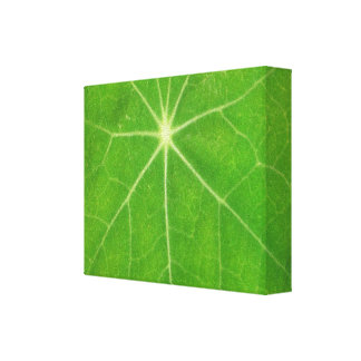 Green Theme  -  Fashion Art Stretched Canvas Print