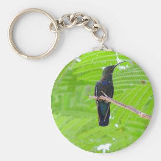 Green Throated Carib Hummingbird Key Chains