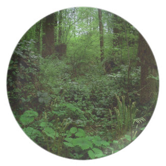 Green Timbers Spring 1 Dinner Plates