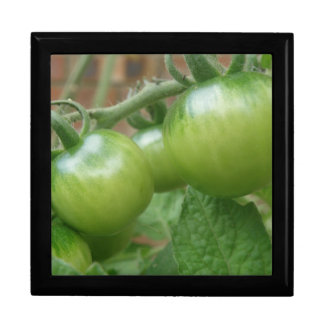 Green Tomatoes Gift Box