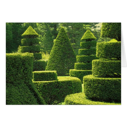 Green Topiary - Greeting Card